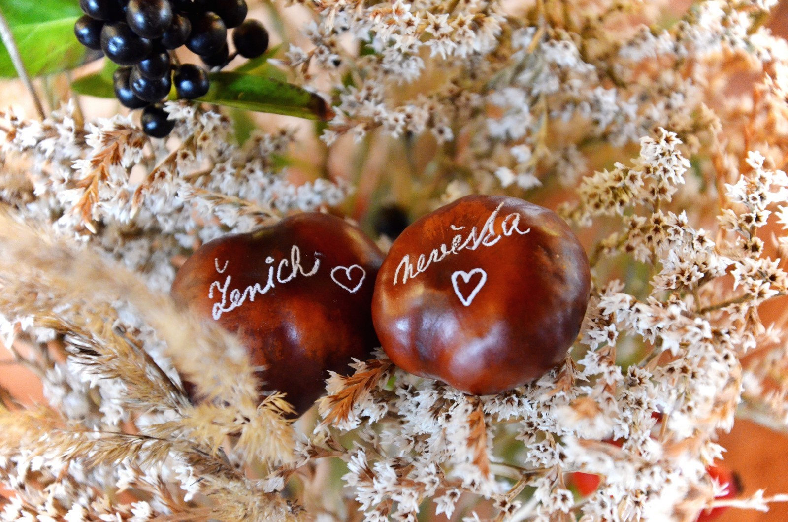 Podzimní svatba na statku