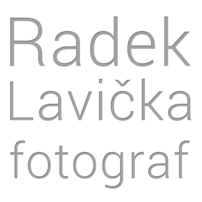 Wedding Factory Praha Radek Lavicka Logo